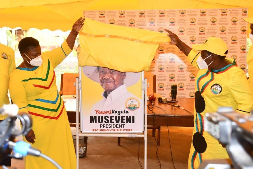 musevei official portrait