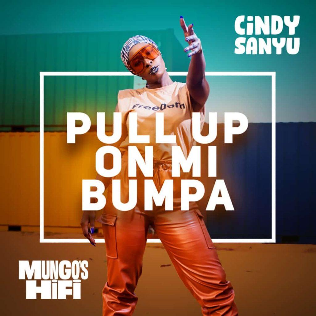 Pull Up On Mi Bumpa by Cindy Sanyu Free MP3 Download